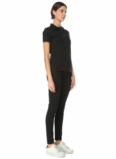 Lacoste Kadın Polo Yaka Tişört 101578682 Sarı